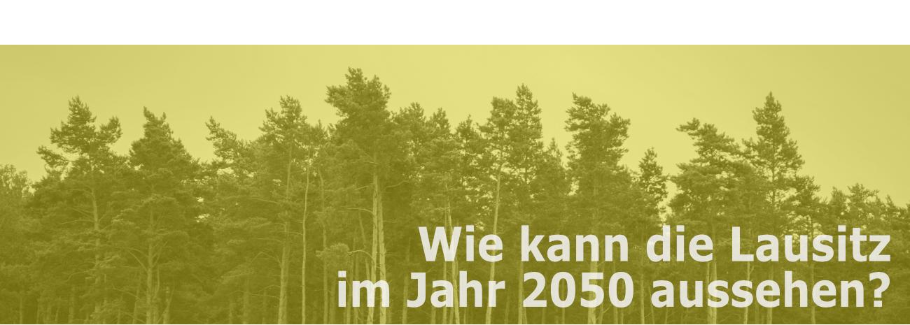 Renaturierte Tagebaufläche mit der Frage: Wie kann die Lausitz im Jahr 2050 aussehen?